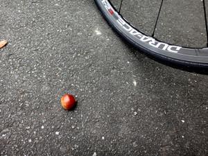 は自転車で・・・: 週末3時間 ...